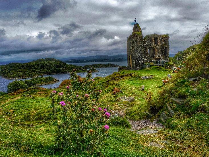 Tarbert Castle Single Card