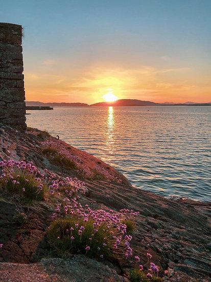 Seapinks at sunset Crinan