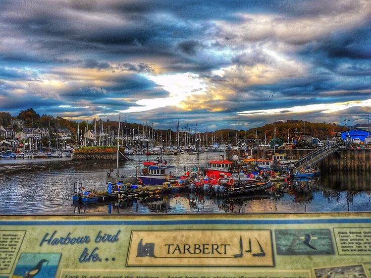 Tarbert Loch Fyne, Single Card