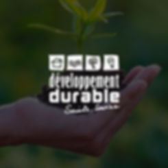developpement-durable.jpg