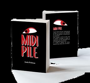 MidiPile-Mockup.png