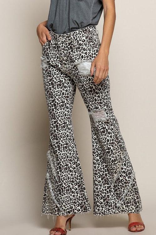 Animal Print Flare Jeans