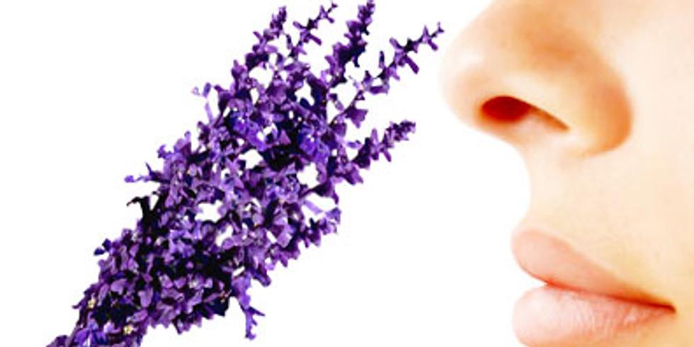 Aromatherapy Meetup – Listen, Ask, Discuss.