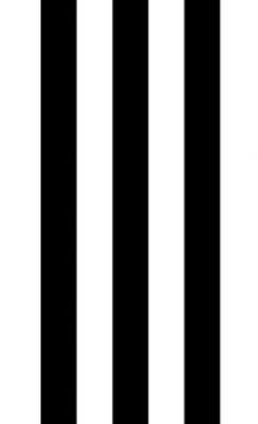 black-and-white-striped-border_edited.jp