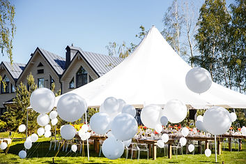 Wedding tent with large balls. Tables se