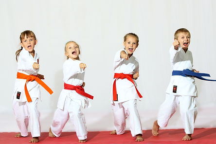 Beautiful sport karate kids.jpg