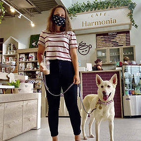 Clinique_Veterinaire_Harmonia_Veterinary
