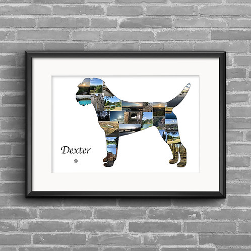 Border Terrier personalised photo collage
