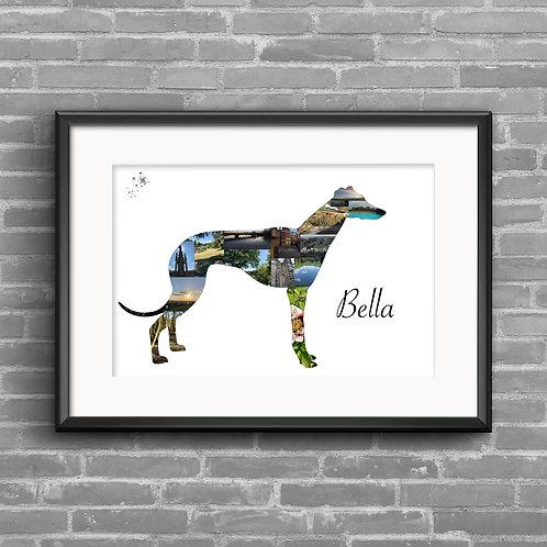 Greyhound photo collage
