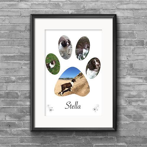 Dog Paw Print photo collage
