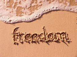 freedom-1314475-640x480.jpg
