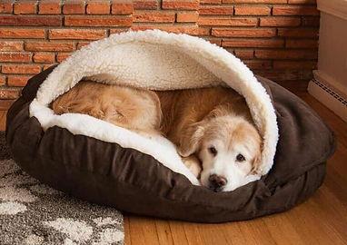 snoozer-cozy-cave13-e1444043618867.jpg