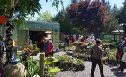 Garden lovers looking for treasures