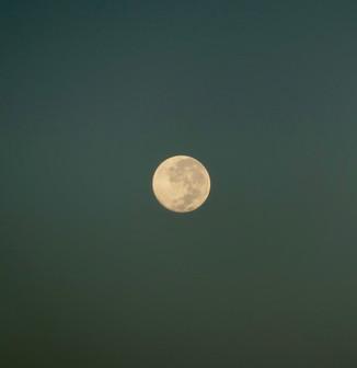 ☆明日は「天秤座」で起こる満月です☆