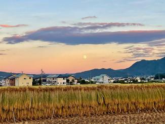 ☆明日は「魚座」で起こる満月です☆
