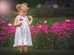 Inspecting Flowers