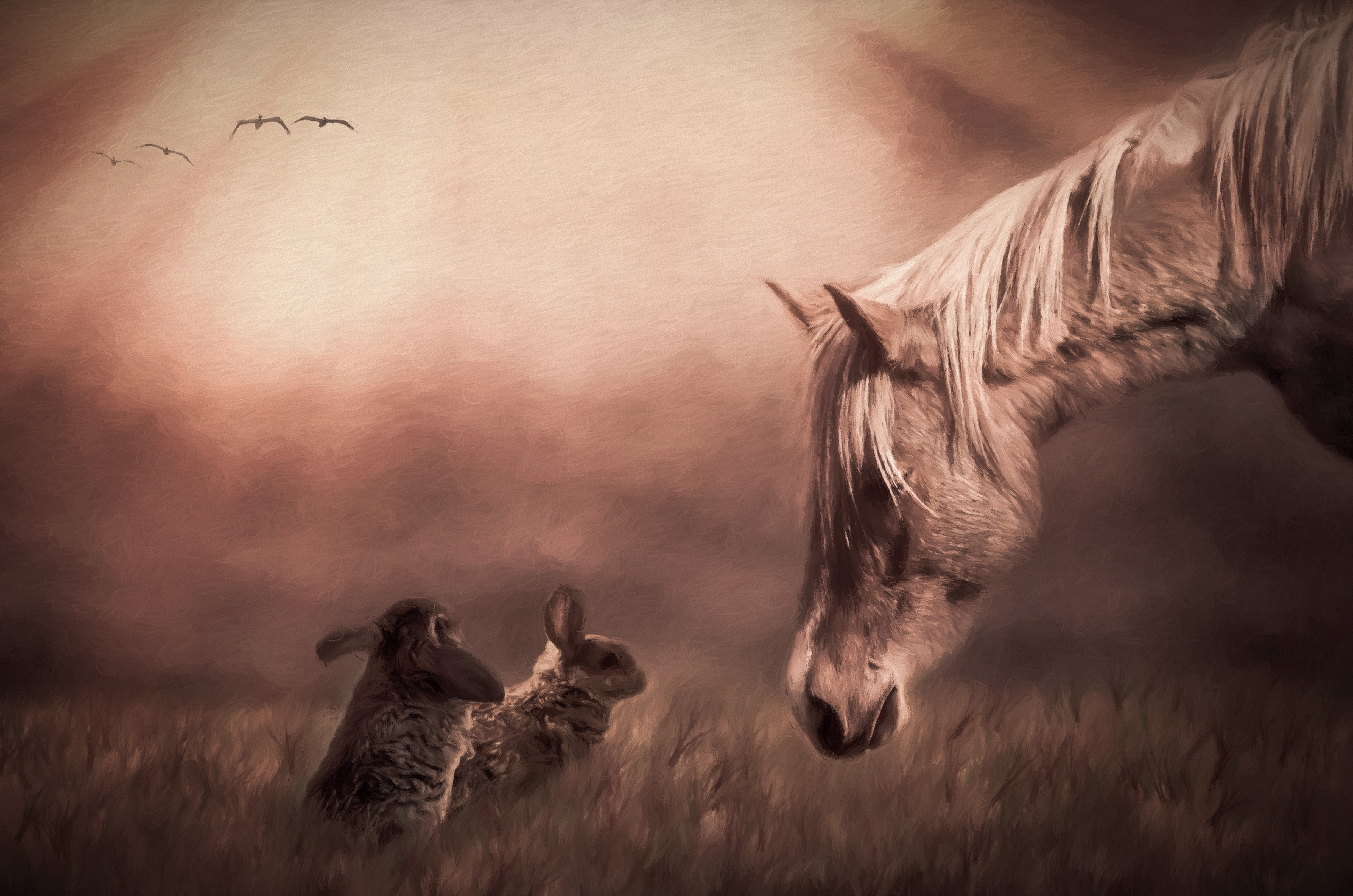 Horse and Bunnies