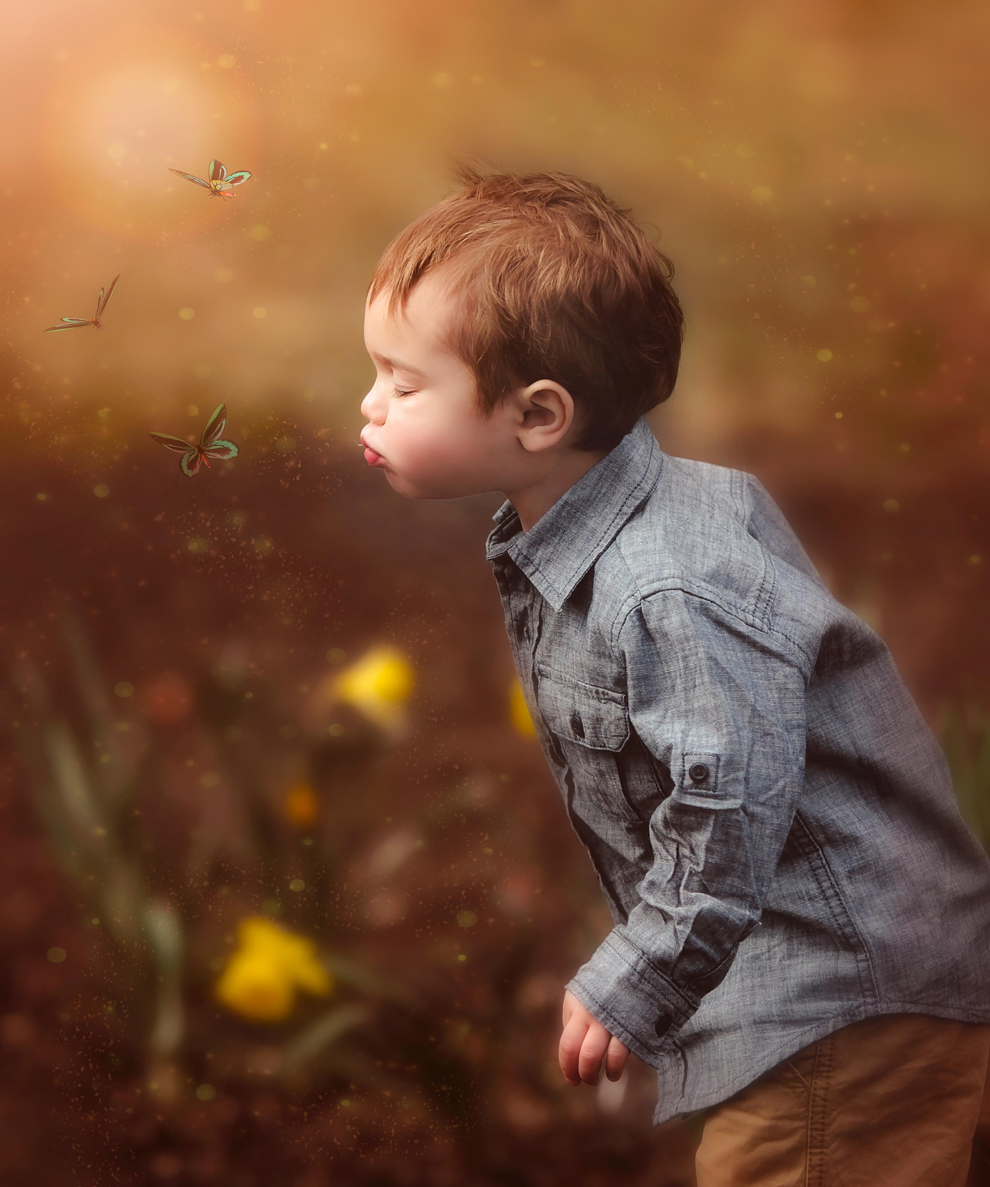 Boy and Butterflies