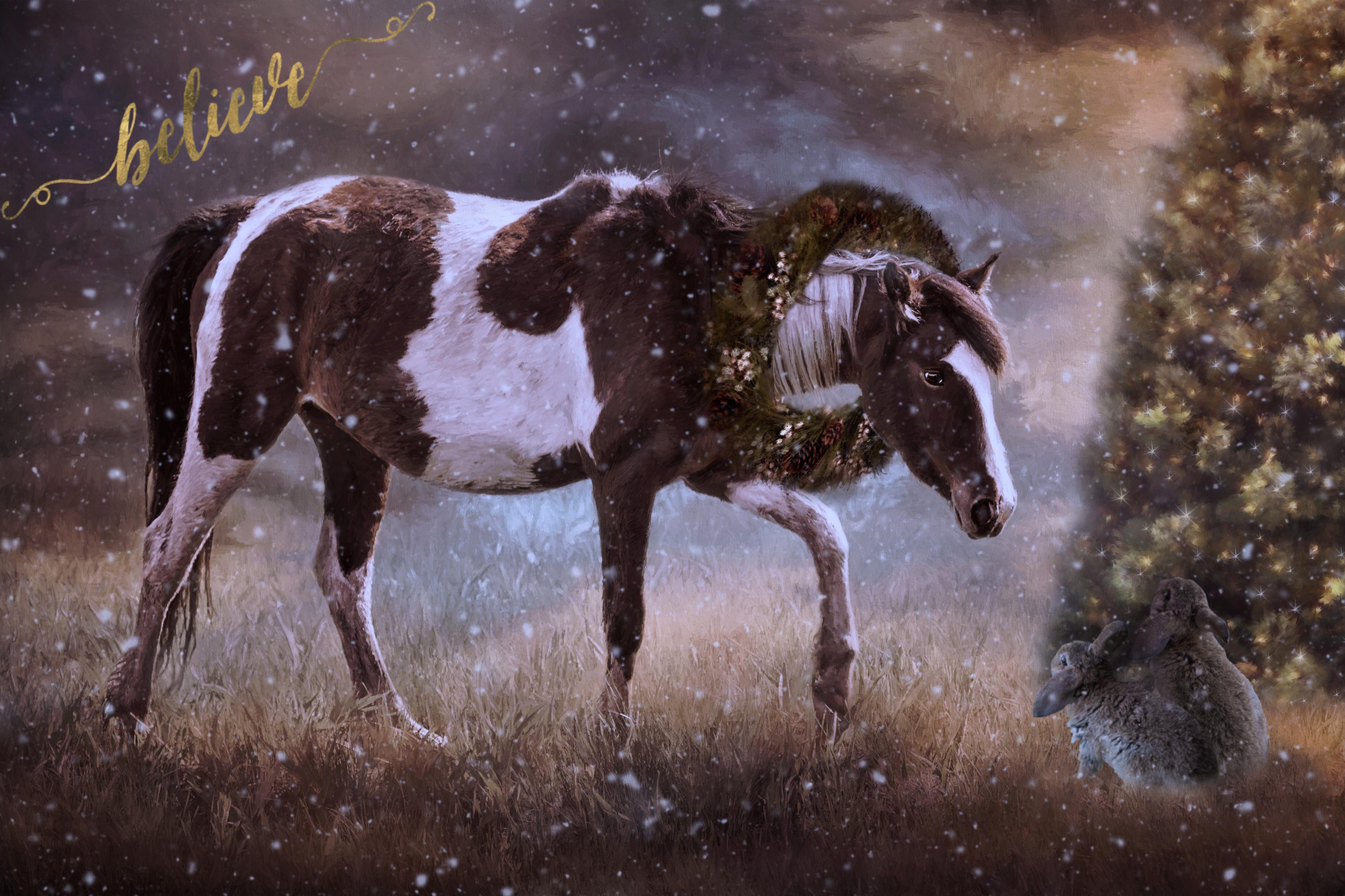 Painterly Pony