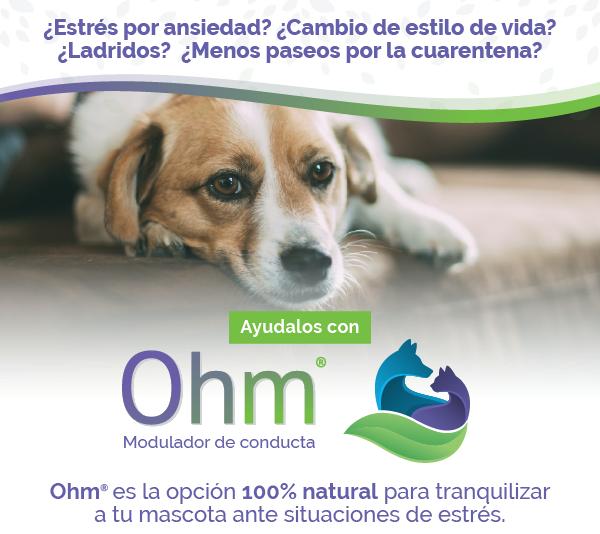 Header-Ohm-Motivar1.png