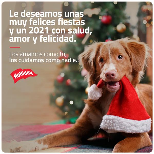 Felices-fiestas-Holliday-Mexico.png