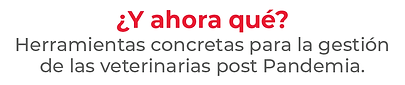 Titulo.png