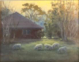 S Gallacher, grazing sheepi.jpeg