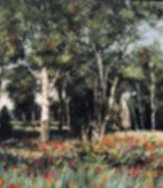 IMG_0014_edited_edited.jpg