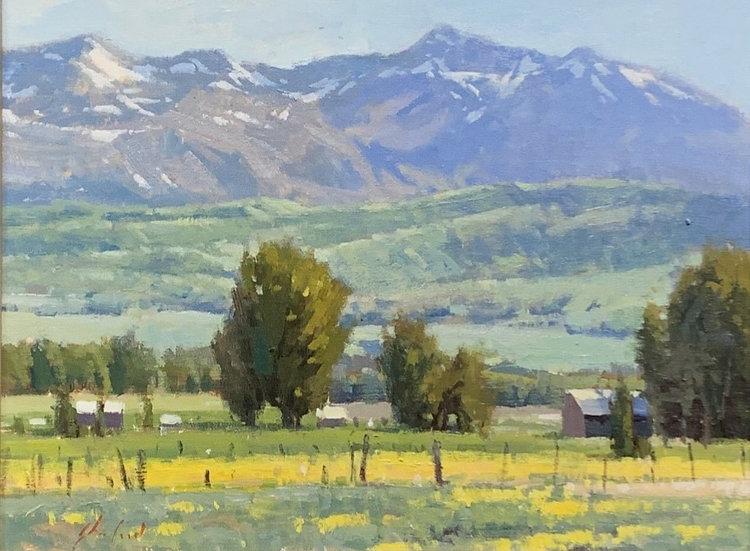 John Poon | Weber Landscape