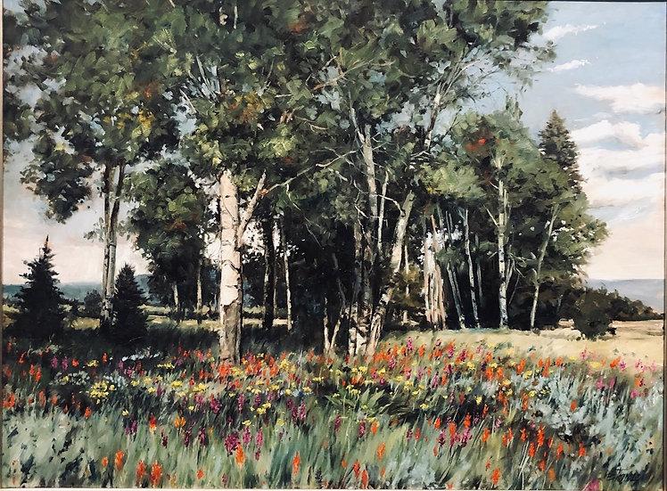 Darrell Thomas | Aspen Spring Landscape
