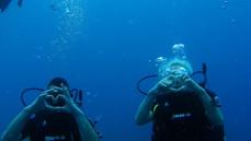 plongée sous marine rethymnon, plongée sous marine en crete, bapteme de plongée en crete, bapteme de plongée sous marine à rethymnon, centre de plongée en crete, centre de plongée à rethymnon, club de plongée à rethymnon, club de plongée en crete, scuba diving rethymno, scuba diving crete, dive center rethymno, dive center crete, diving center rethymno, diving center crete, scuba diving rethymno, scuba diving crete, discover scuba diving crete, night diving rethymno