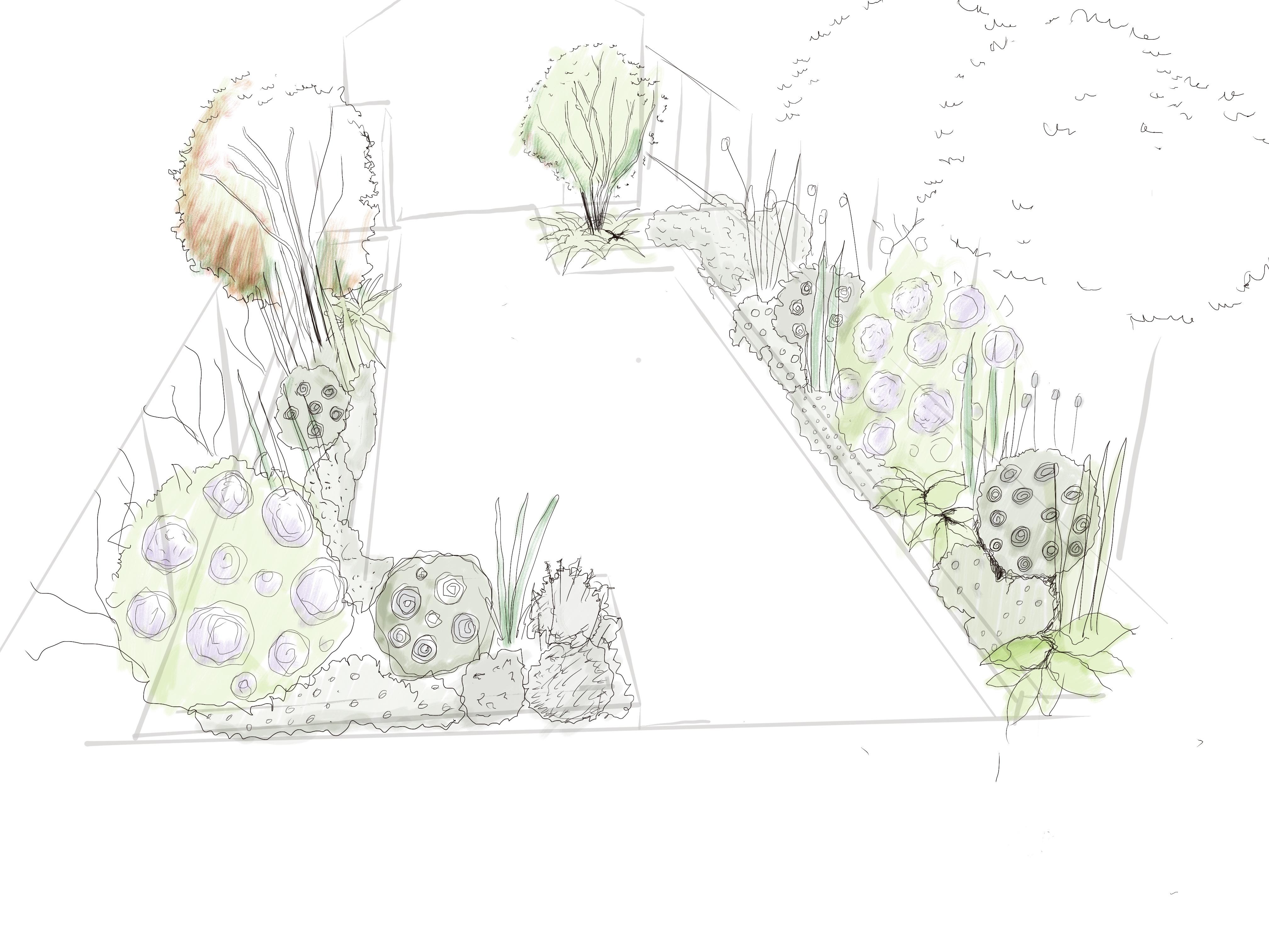 Maidenhall__Rd_Plant_Design