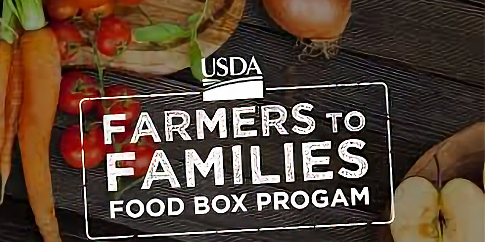 Free Food boxes- 15 left
