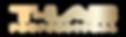 T-LAB Logo Gold.png