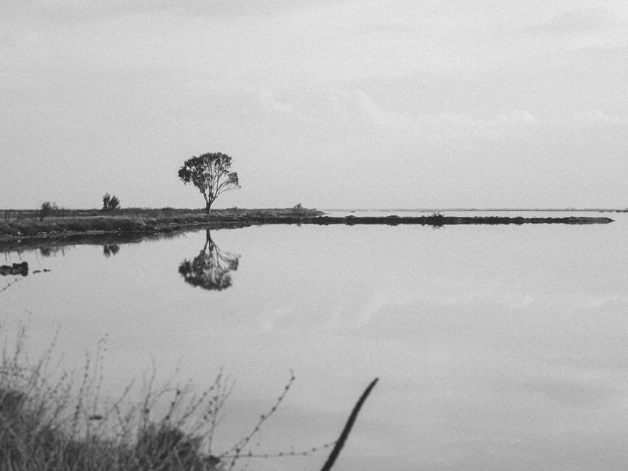 Mirroring Land.