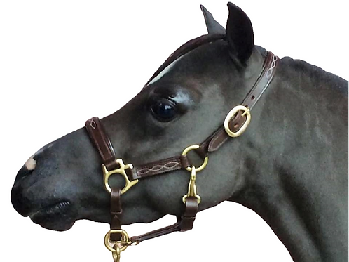 Eastern Designs Plain Headcollar
