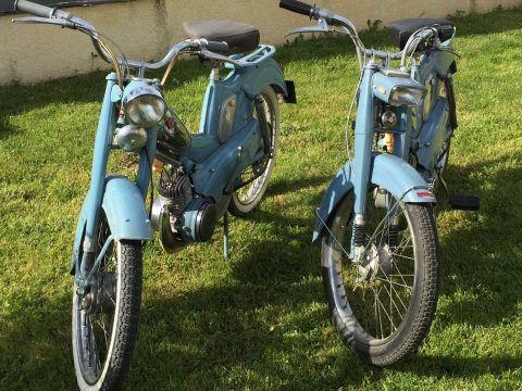 duo-de-bleues-480x360.jpeg