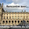 Clip clownesque sur le Musée du Louvre - Karine Filhoulaud