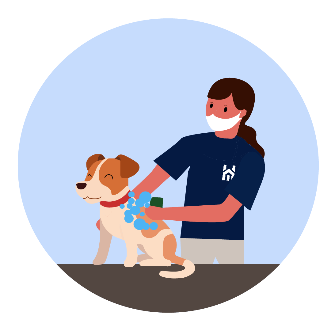Dog Grooming Service (NEW)