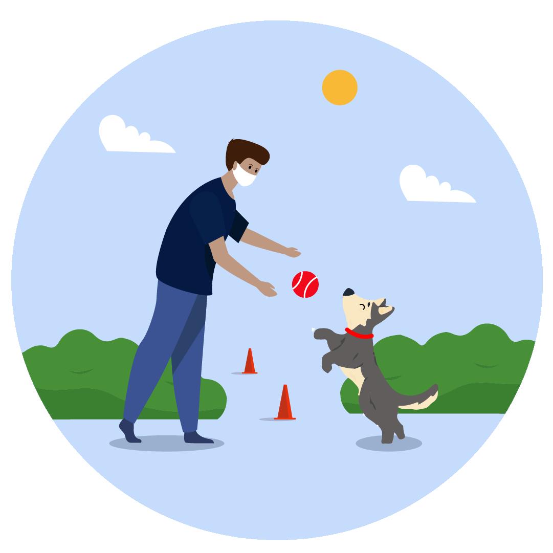 Dog Training- Consultation (NEW)