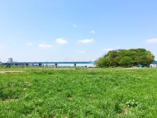 8月23日のごみ拾い / 中止のお知らせ