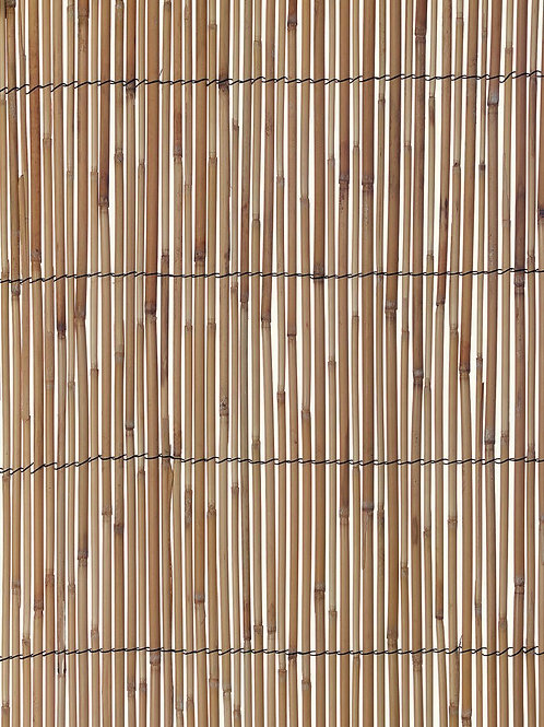 Bamboo Backdrop