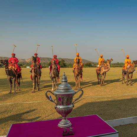 Camel Polo at Mundota