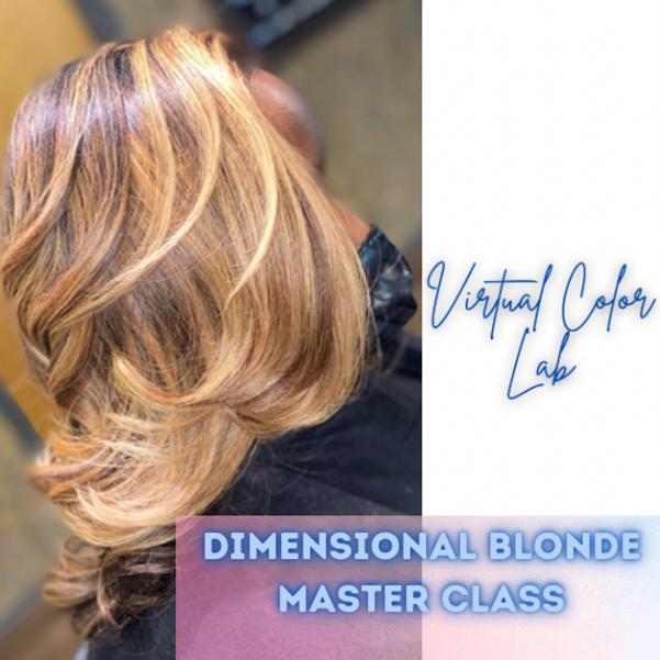 Virtual Color Lab: Dimensional blonde Master class