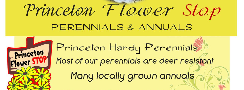 Princeton Flower Stop