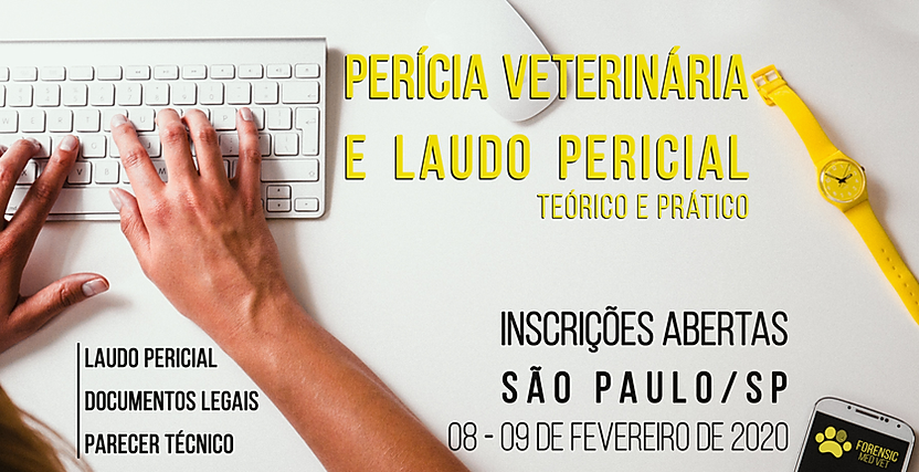 laudo pericial site.png