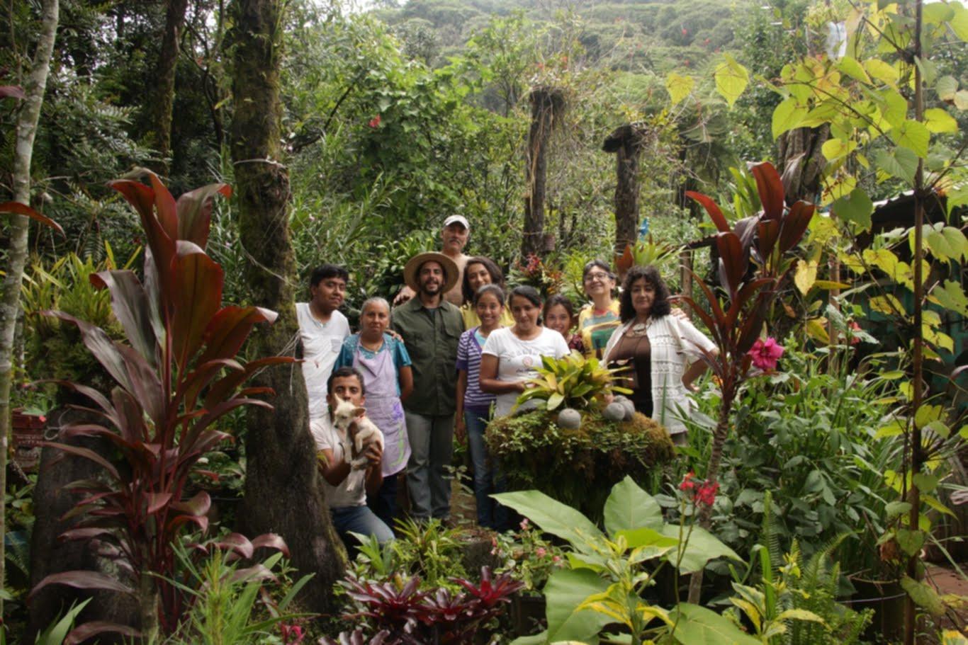 Comunidad de personas árbol