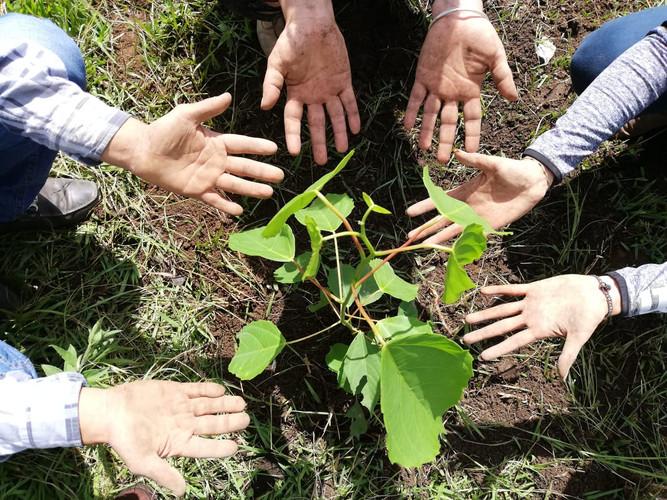 plantando esperanzas_ Parque La Loma en Xalapa