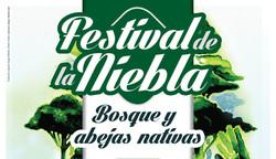 Festival de la Niebla