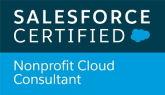 Nonprofit Cloud Consultant.jpg